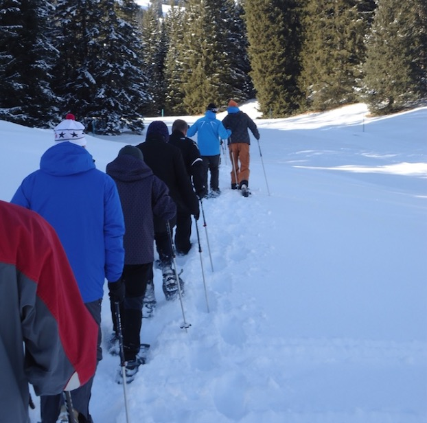 dacadoo winter snow shoe hiking